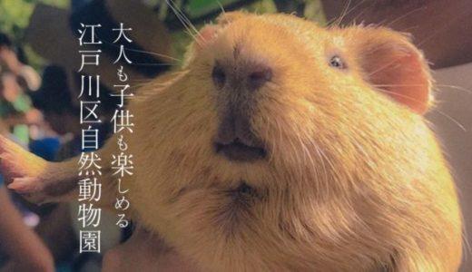 """【天国】江戸川区自然動物園、動物との""""ふれあい""""込みで無料てマジか!"""